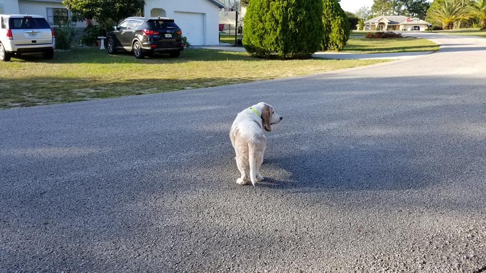 Standing in the street outside Mom's home.  It is time to move on.